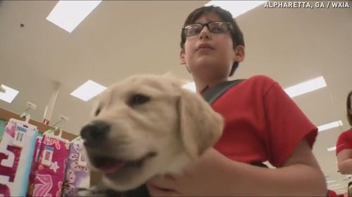 Adorable puppies help autistic kids make connections